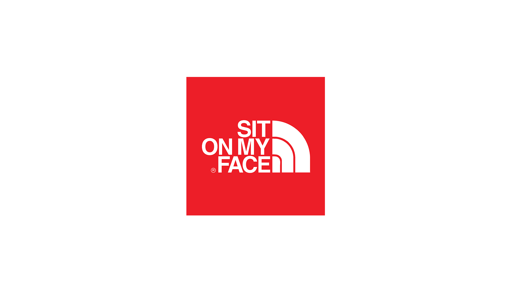 sit-on-my-face-north-face-logo-flip-ethan-solouki
